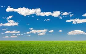 Обои поля, сельская местность, небо, солнечный, фермы, облака