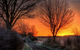 Картинка дорога, природа, утро