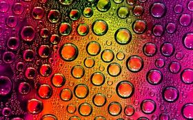 Обои стекло, свет, пузырьки, цвет