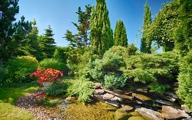 Обои камни, кусты, деревья, вода, парк, солнечно, цветы