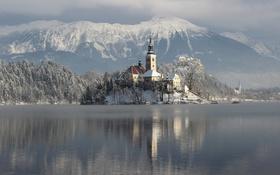 Обои блед, снег, зима, озеро