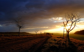 Картинка дорога, пейзаж, закат