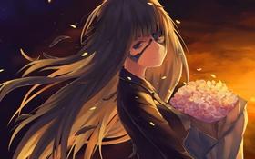 Картинка небо, девушка, закат, цветы, робот, букет, аниме