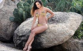Картинка Bikini, Graffiti, Brazilian, Rock Cactus, Carol Nakamura