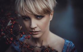 Картинка взгляд, ягоды, портрет, боке