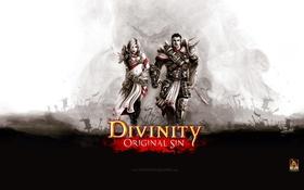 Картинка RPG, Divinity: Original Sin, Пошаговая