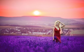Картинка Girl, Sunset, Autumn, Kristina, Lavender, Portrait, People