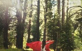 Картинка лес, девушка, деревья, красный, платок