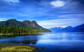 Обои лес, небо, деревья, горы, озеро, голубое, берег