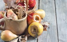 Обои груша, листья, яблоки