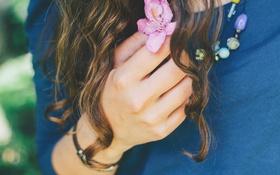 Обои цветок, розовый, волосы, рука, лепестки, локоны