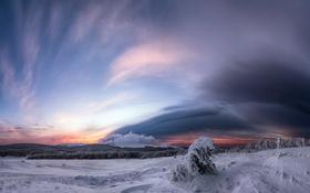 Картинка зима, поле, снег