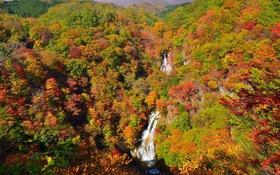 Картинка осень, лес, небо, горы, река