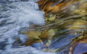 Обои поток, ручей, река, вода