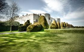 Обои Wales, кусты, Chirk Castle, замок, дерево, Великобритания, трава