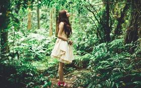 Картинка лес, девушка, азиатка
