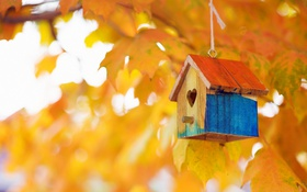 Обои осень, природа, домик