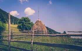 Картинка поле, цветы, забор, хижина, ферма