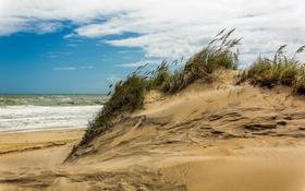 Обои природа, море, дюны