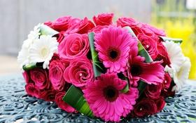 Обои цветы, розы, букет, герберы