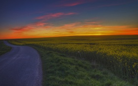 Картинка дорога, поля, сумерки, сельская местность, фермы, оранжевое небо, поля цветов