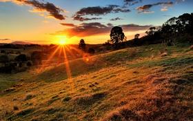 Обои облака, трава, деревья, холм, солнце
