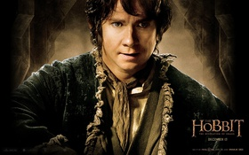 Обои martin freeman, hobbit: the desolation of smaug, хоббит: пустошь смауга, бильбо бэггинс, bilbo baggins, мартин ...