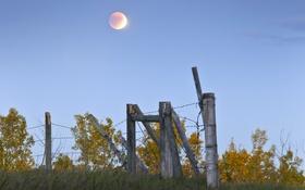 Картинка луна, забор, колючая проволока, небо, поле, деревья, трава