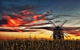Обои небо, закат, мельница