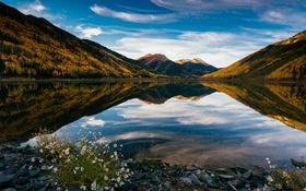 Картинка пейзаж, цветы, горы, природа, озеро