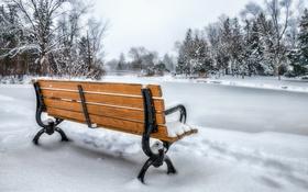 Обои Park, Bench, Snow
