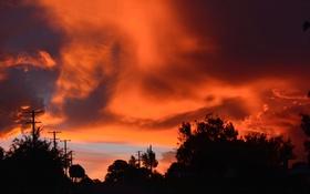 Картинка небо, облака, деревья, закат, столб, силуэт