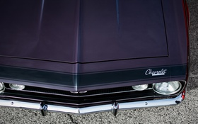 Обои Chevrolet, капот, Camaro
