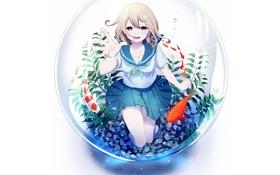 Картинка рыбы, аквариум, Девушка, форма