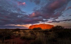 Обои облака, скала, Австралия, зарево, национальный парк, буш, Улуру-Ката Тьюта