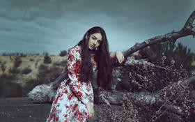 Картинка взгляд, девушка, природа, лицо, платье
