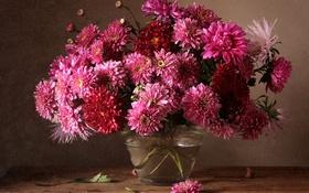 Обои осень, букет, хризантемы