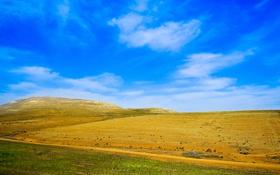 Обои поле, небо, трава, облака, холмы