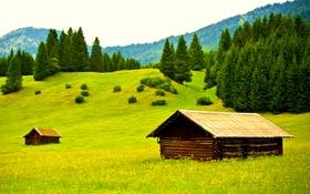 Обои домики, горы, Германия, деревья, поляна, зелень, трава