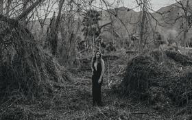 Картинка dress, trees, woman, breast, hills, lips, hair