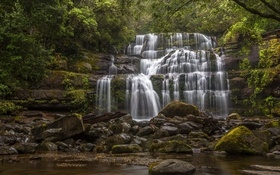 Обои лес, камни, водопад, Австралия, каскад, Australia, Tasmania