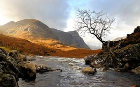 Обои горы, природа, река