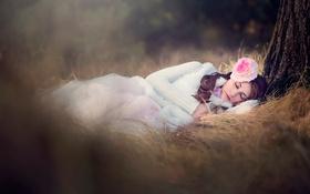 Обои девушка, природа, дерево, сон