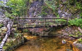 Обои лес, мост, ручей, камни, обработка, Испания, кусты