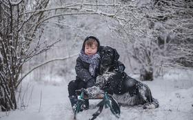 Картинка зима, собака, мальчик