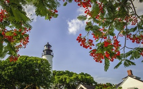 Картинка небо, деревья, цветы, маяк