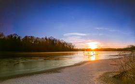 Обои лебеди, река, утро