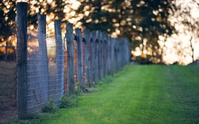 Картинка поле, забор, утро