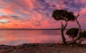 Обои пейзаж, закат, Port Lincoln National Park