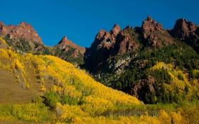 Картинка желтые, горы, Colorado, деревья, Maroon Bells, лес